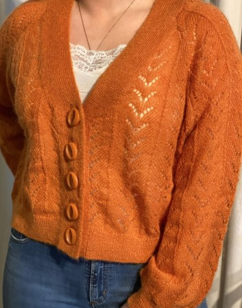 Bytimo 992 - Rust Mohair Cardigan